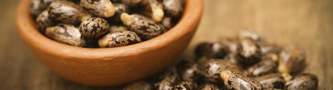 Bienfaits de l'huile de ricin sur la santé