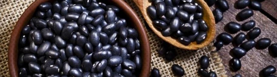 Bienfaits des aliments riches en protéines sur la santé