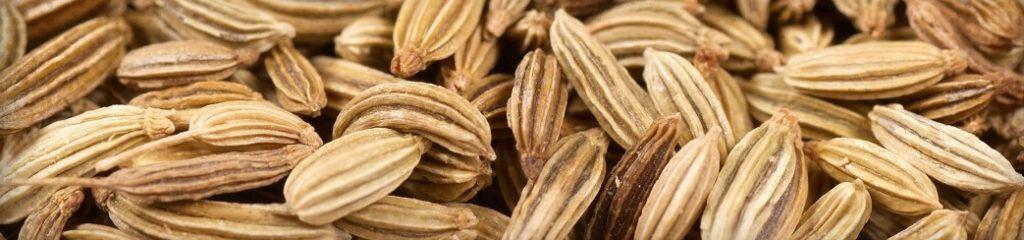 Les bienfaits de l'huile essentielle de fenouil