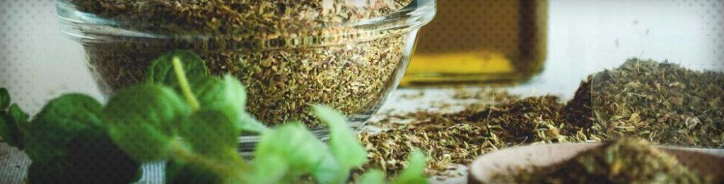 Les bienfaits de l'huile essentielle d'origan