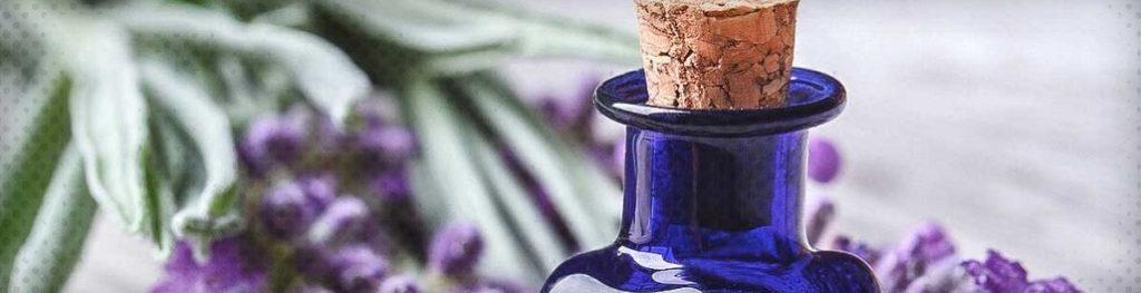 Les meilleures huiles essentielles pour équilibrer les hormones