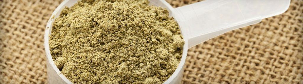 Protéine de chanvre en poudre la protéine végétale idéale