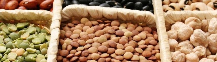TOP 10 des aliments riches en protéines végétales