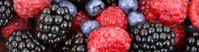 Bienfaits de la quercétine sur la santé