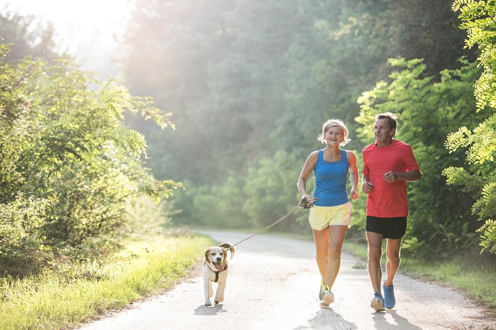 Les bienfaits de la glucosamine : pour les articulations, la digestion et plus encore