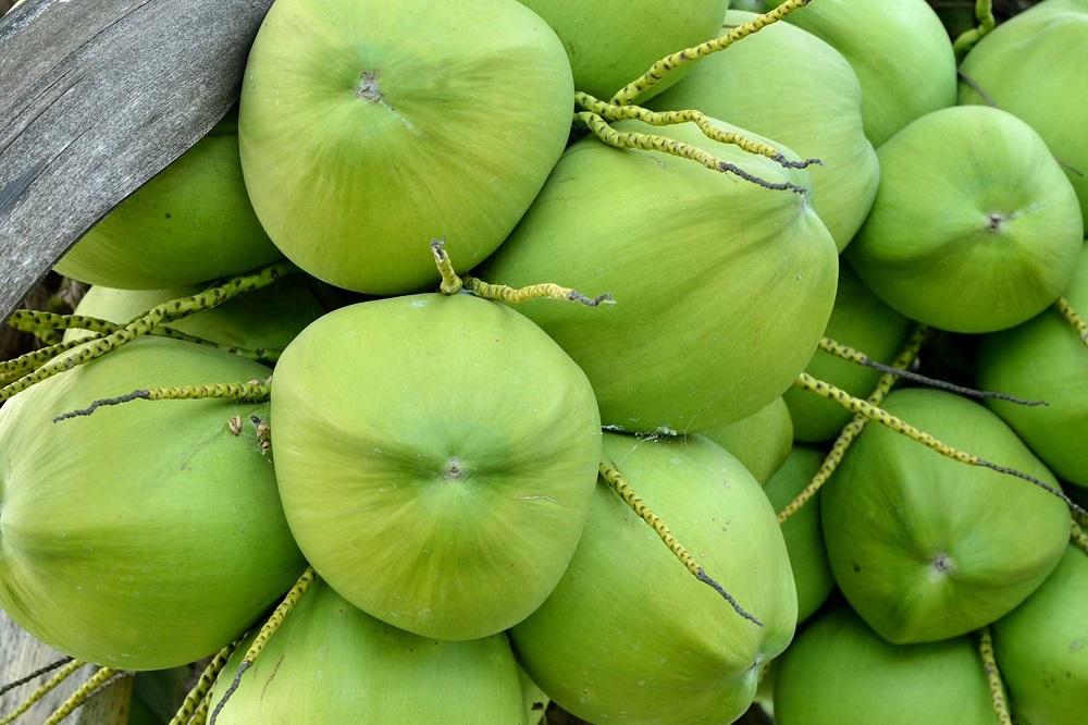 19 façons surprenantes d'utiliser l'huile de coco pour la peau