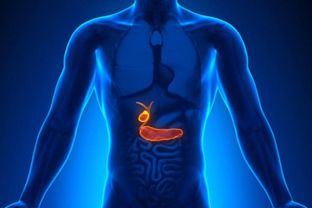 4 vitamines pour soutenir votre vésicule biliaire