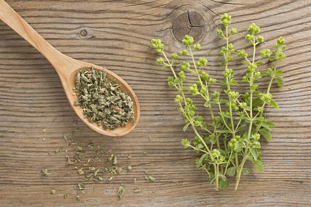5 plantes pour la MPOC