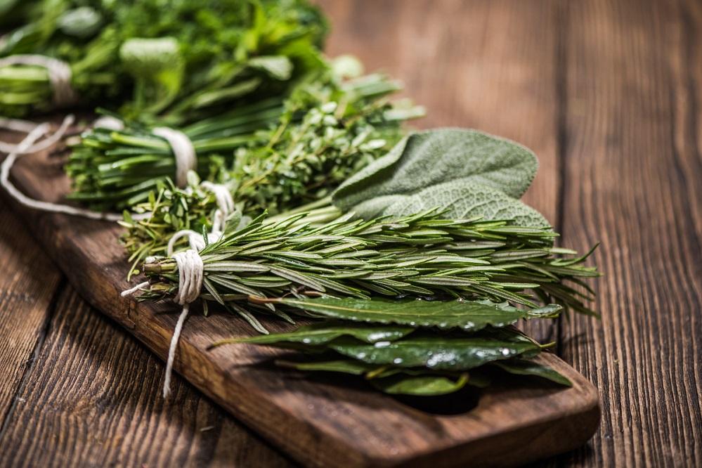 7 plantes pour traiter la toux chronique