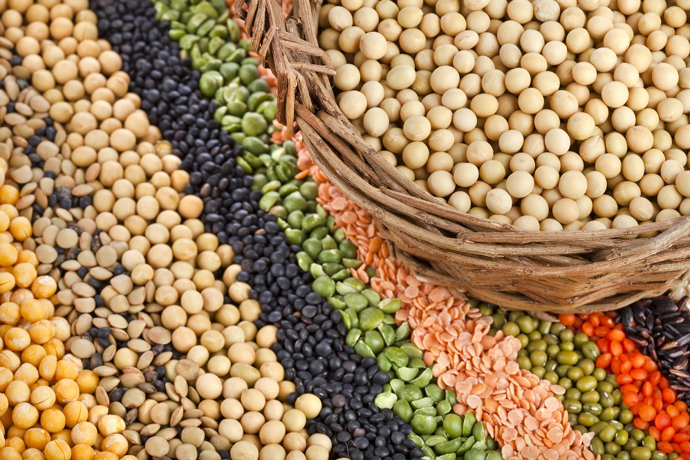 De combien de grammes de protéines avez-vous besoin par jour ?