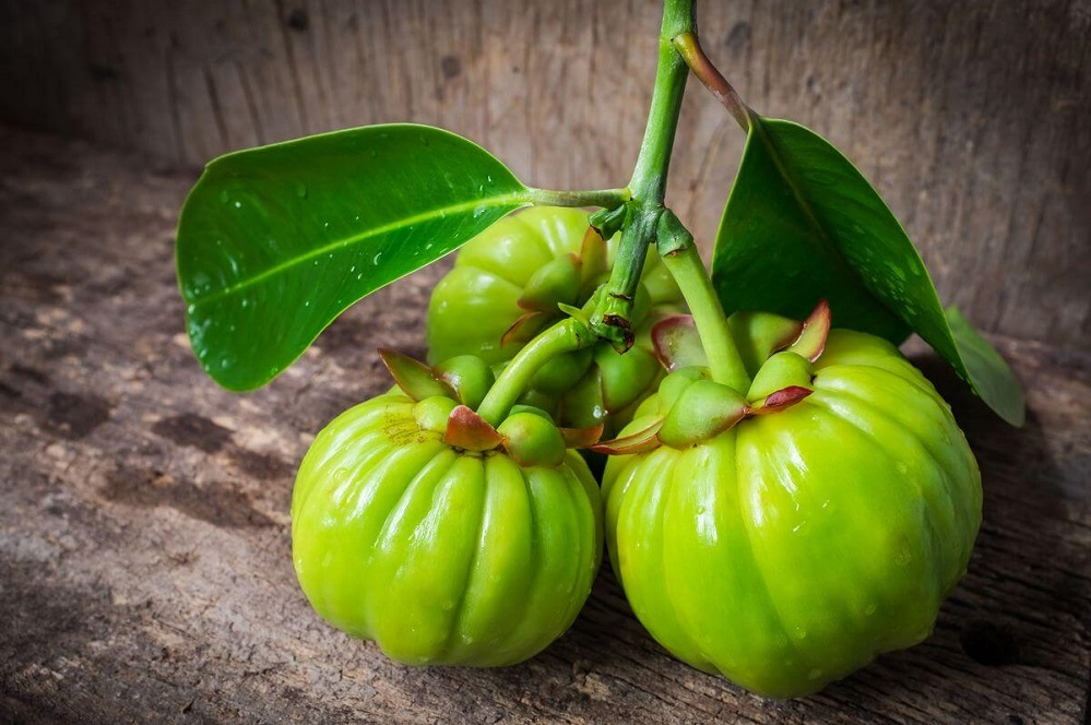 Le Garcinia Cambogia : ce supplément de perte de poids fonctionne-t-il vraiment ?