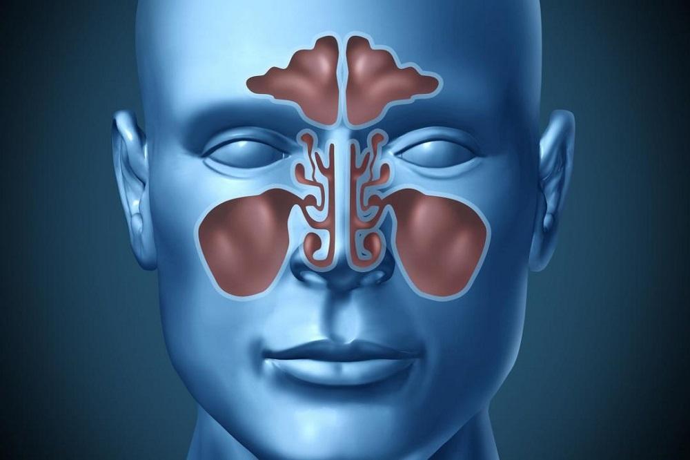 Les 3 meilleures vitamines pour les sinus