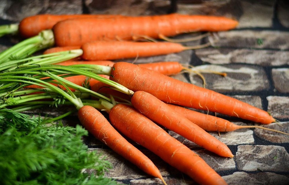 Bienfaits de l'huile de graine de carotte sur la santé