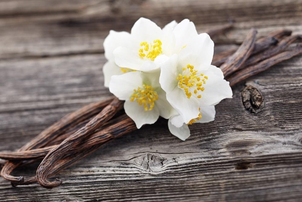 Bienfaits de l'huile de vanille sur la santé