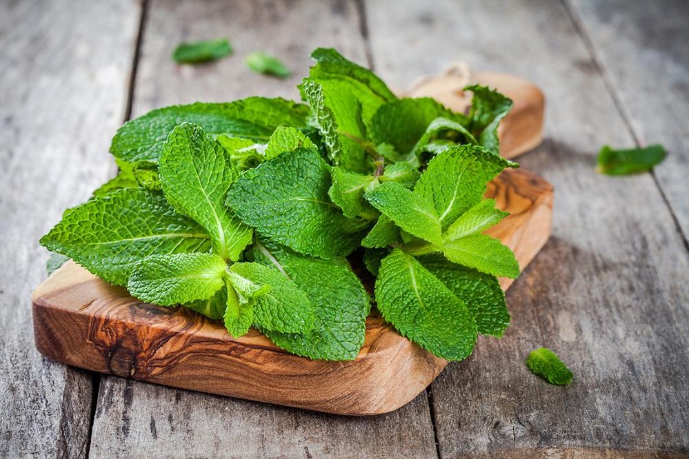 Bienfaits de l'huile essentielle de menthe poivrée sur la santé