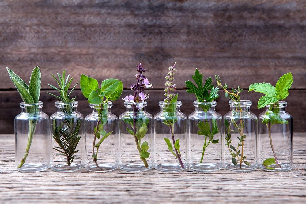 Bienfaits et utilisations possibles des huiles essentielles