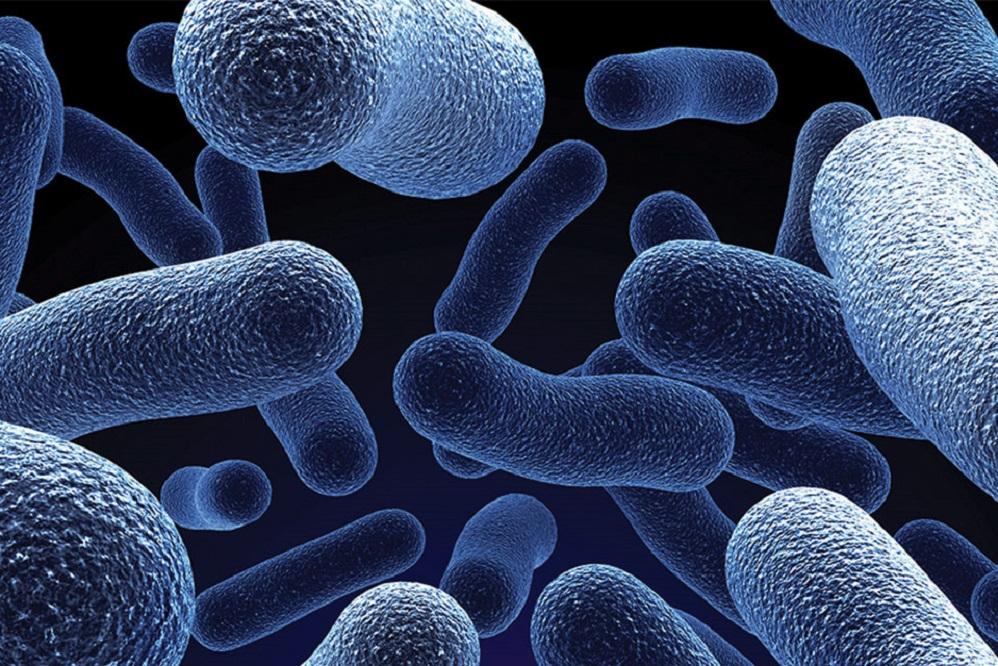 Les probiotiques peuvent-ils aider à traiter l'eczéma ?