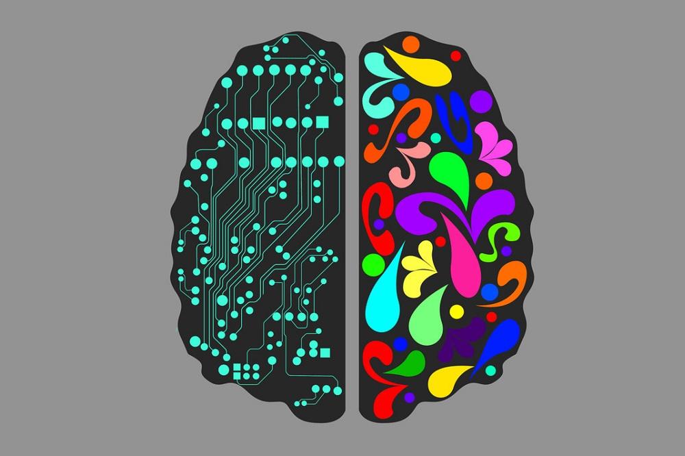 Stratégies nutritionnelles pour la maladie d'Alzheimer