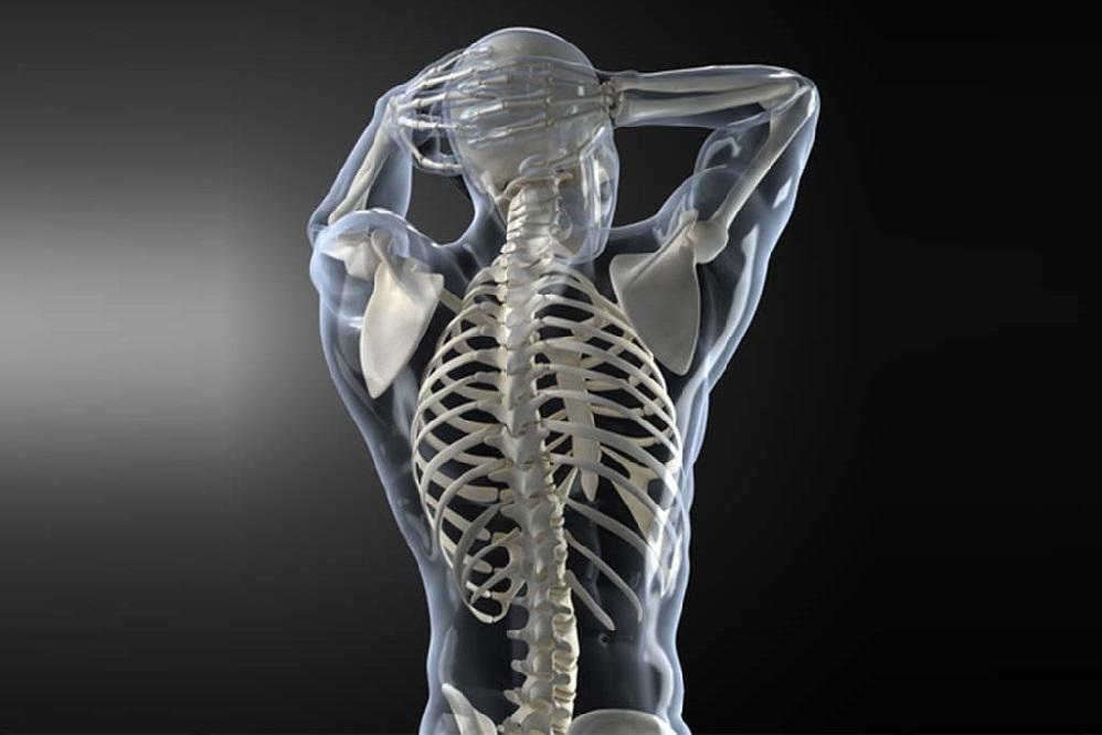 TOP 4 des vitamines et minéraux pour la santé des os