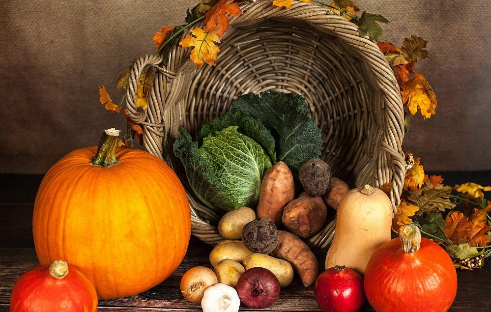 TOP 15 des aliments riches en thiamine et leurs bienfaits pour la santé