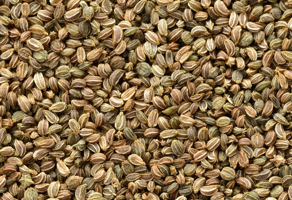 Les bienfaits des graines de céleri : pour l'arthrite, la pression artérielle et plus encore