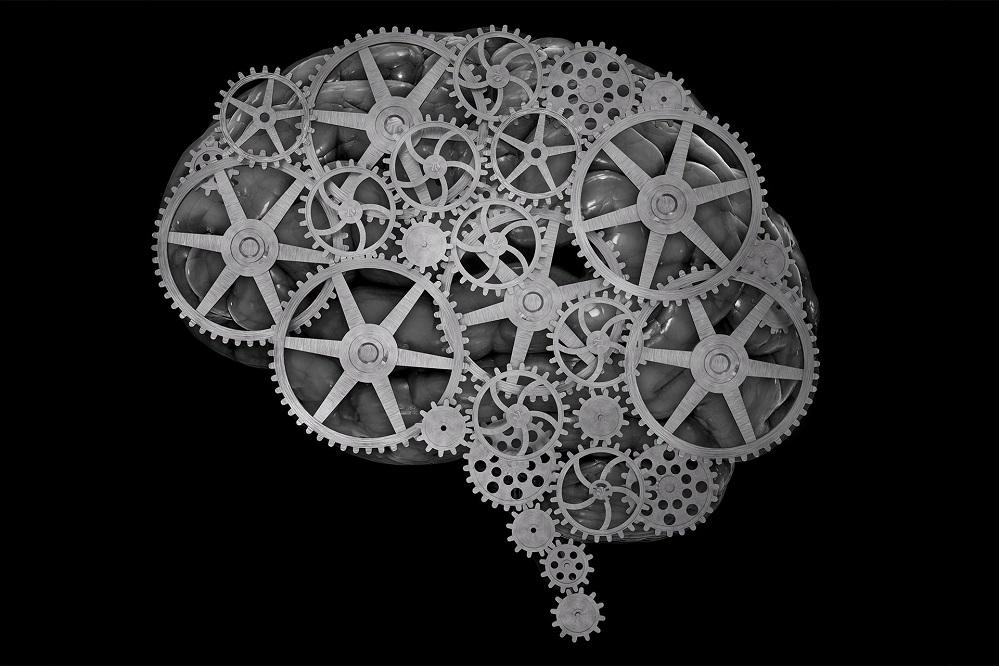 Vitamines cérébrales : peuvent-elles stimuler la mémoire ?