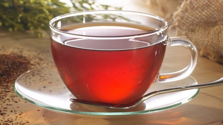 Bienfaits du thé rooibos sur la santé
