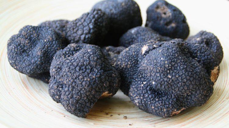6 bienfaits des truffes sur la santé