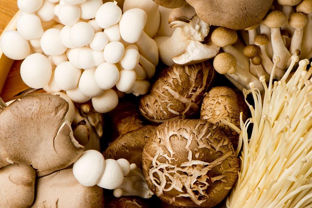 Bienfaits des champignons pour la santé