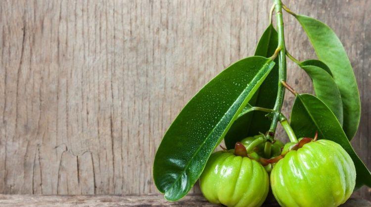 Le garcinia cambogia peut-il aider à perdre du poids ?