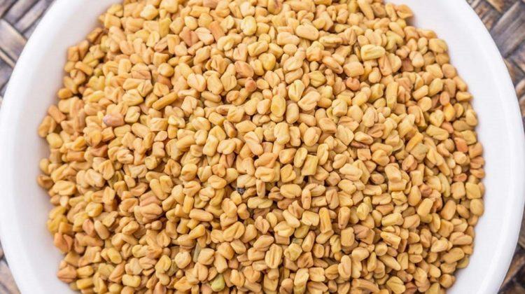 Les graines de fenugrec pour la chute des cheveux (remède naturel efficace)