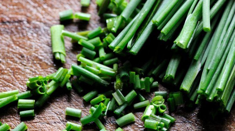 Ciboulette : une herbe ancienne à la saveur délicate