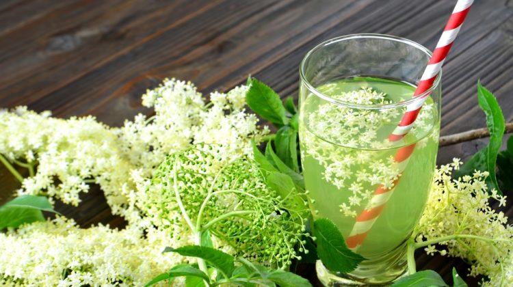 Fleurs de sureau : une saveur qui remonte à l'âge de pierre