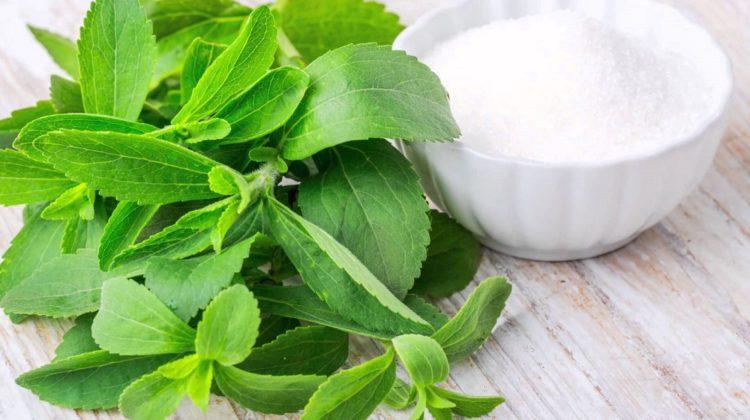 La stévia est-elle sans danger ?