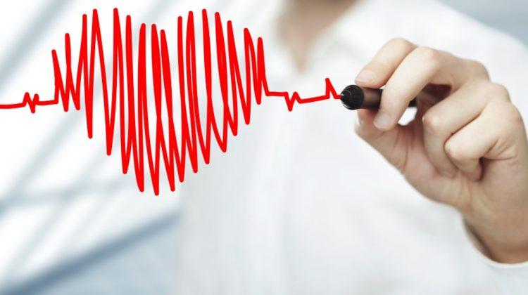 Le cœur est-il un muscle ou un organe ?