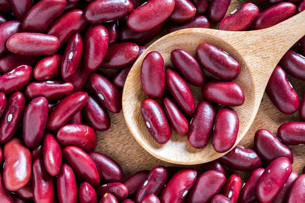 Bienfaits des haricots rouges sur la santé (+ valeur nutritive)