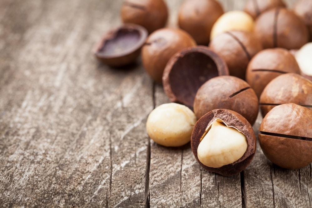 Bienfaits des noix de macadamia sur la santé (+ valeur nutritive)