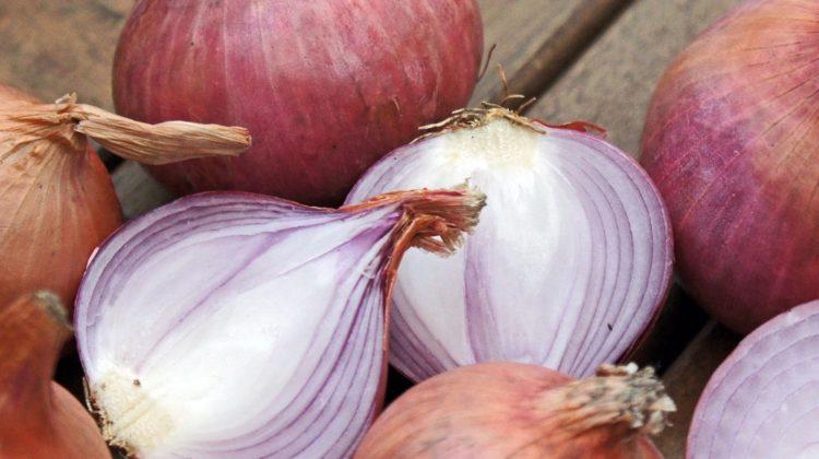 Bienfaits des oignons sur la santé (+ valeur nutritive)