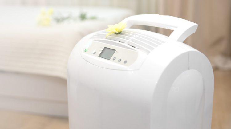 Bienfaits des purificateurs d'air sur la santé