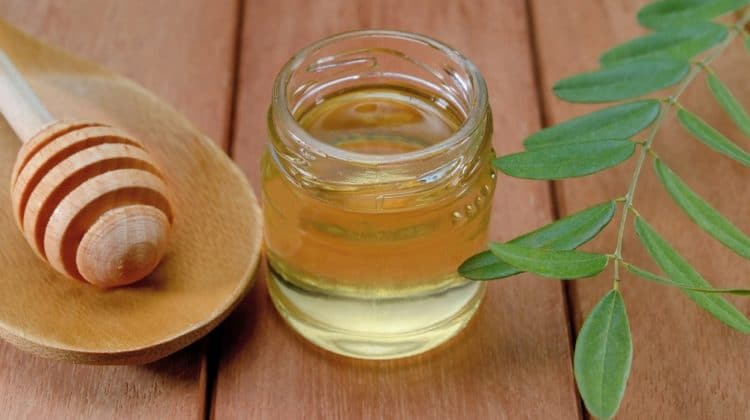 Bienfaits du miel d'acacia sur la santé (+ valeur nutritive)