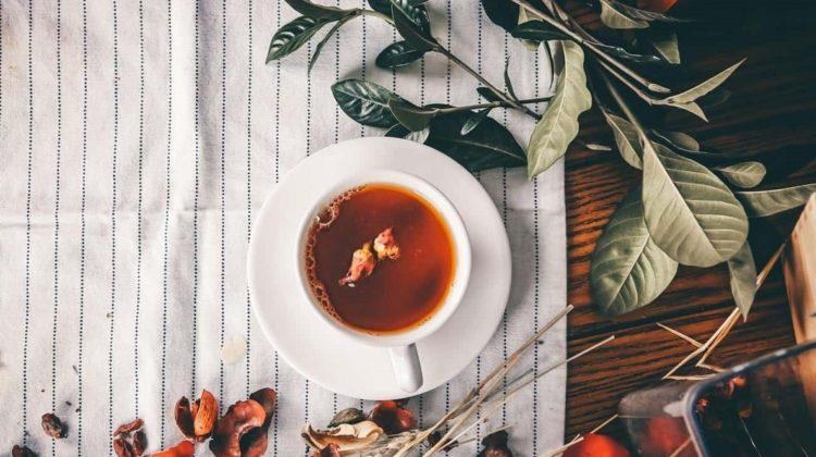 Bienfaits du thé d'Assam sur la santé (+ comment le préparer)