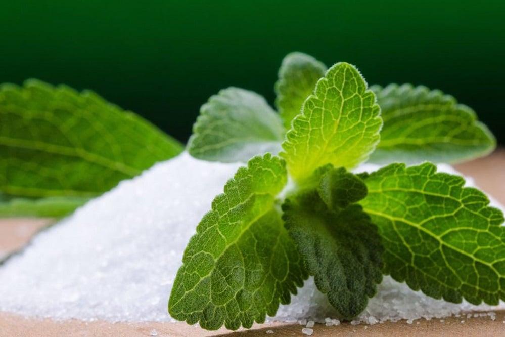 La stévia est-elle un bon substitut du sucre ?