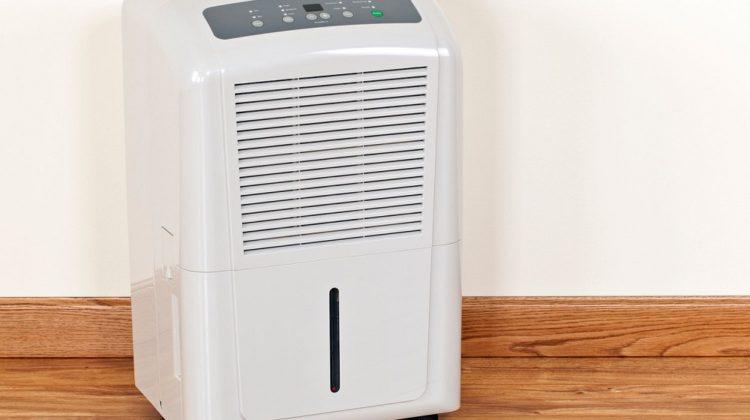 Les 3 meilleurs purificateurs d'air contre les allergies