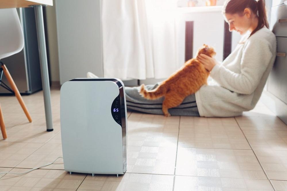 Les 3 meilleurs purificateurs d'air contre les mauvaises odeurs