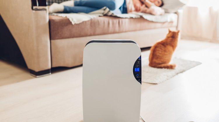 Les purificateurs d'air sont-ils efficaces pour l'asthme ?