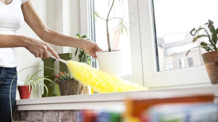 Pourquoi mon humidificateur produit-il une poussière blanche ? (+ solutions)